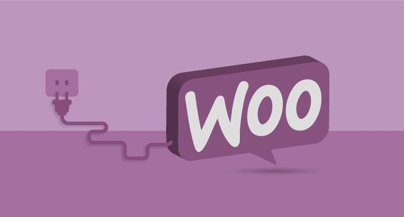 PSD to WordPress Conversion Service 10 Popular Extensions for WooCommerce