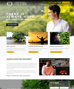 Portfolio Image | PSD to Wordpress Conversion Service