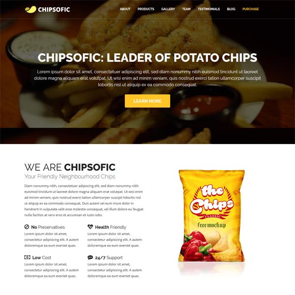 PSD to WordPress Conversion Service Chipsofic